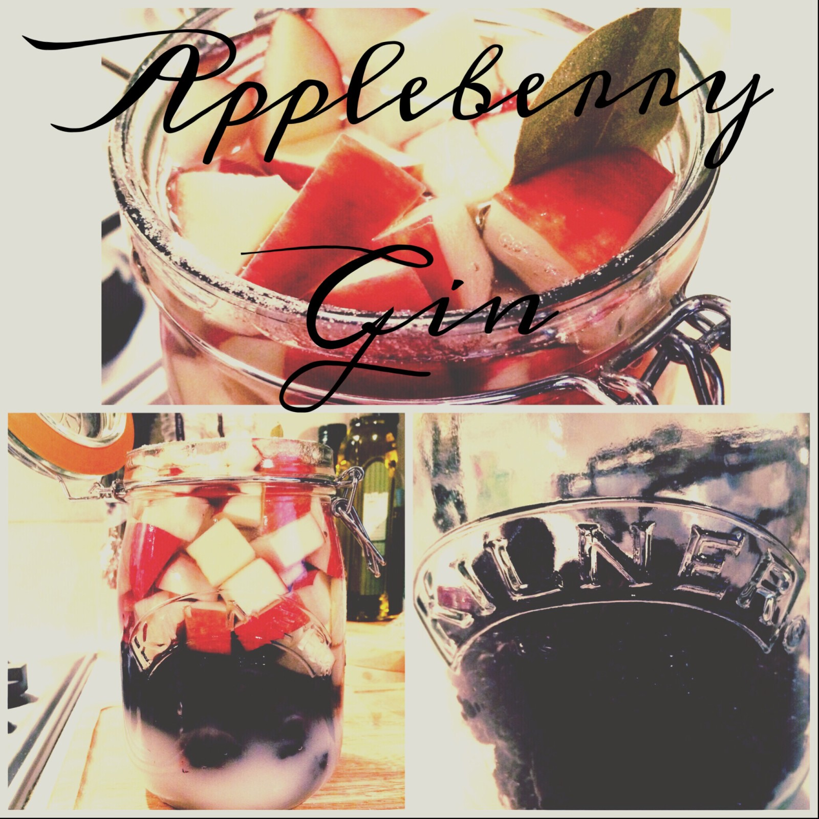 Apple and Blackberry Homemade Gin 11
