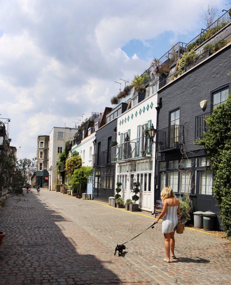 Dog friendly places Notting Hill